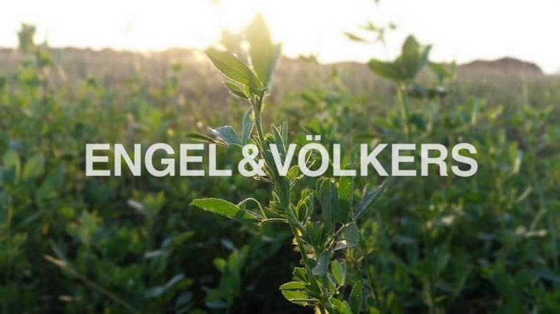 campo - el futuro de producción sostenible