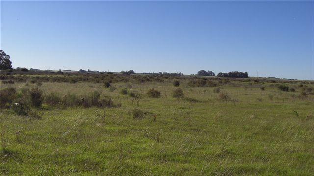 campo en artilleros. ref: 1.008