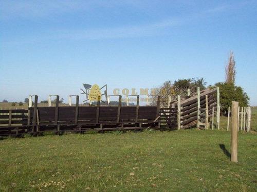 campo en cañada bellaca - ref: 498