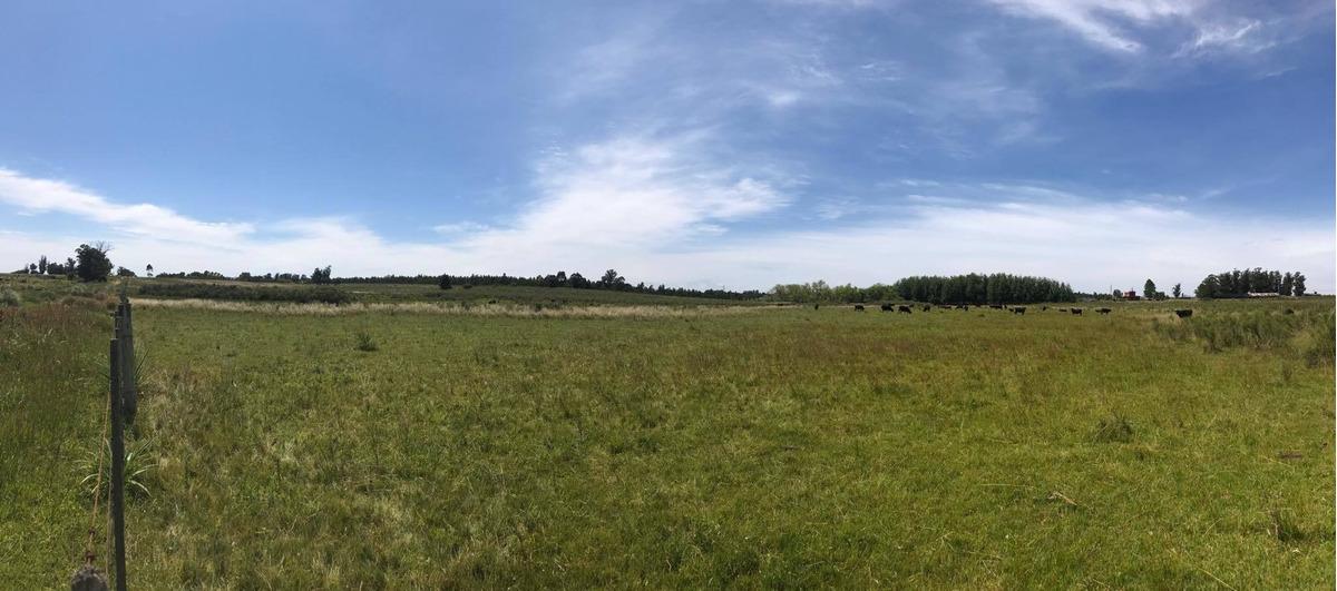 campo en cañada grande