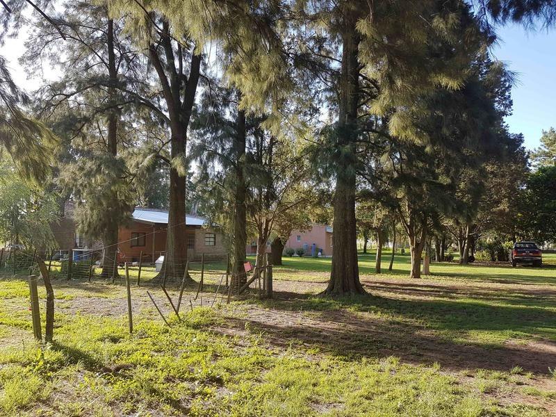 campo en cañuelas