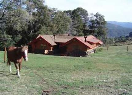 campo en chapelco