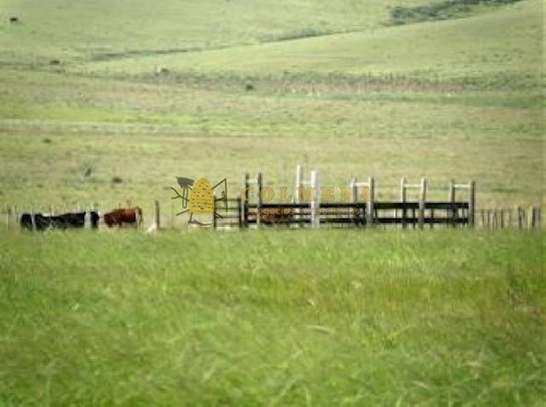 campo en garzon - ref: 493