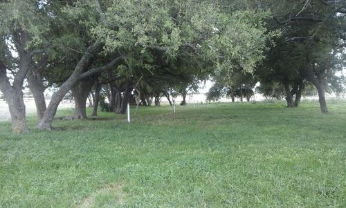 campo en madariaga