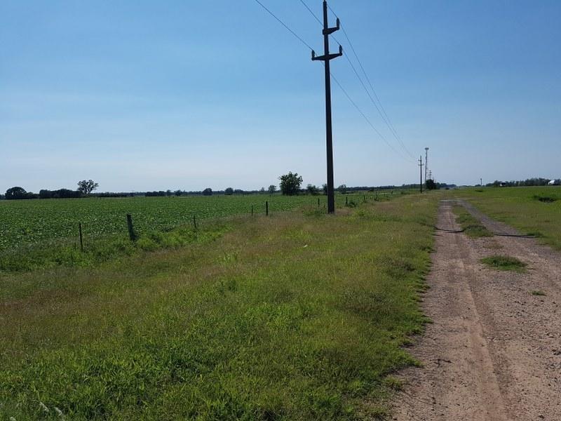 campo en ramallo