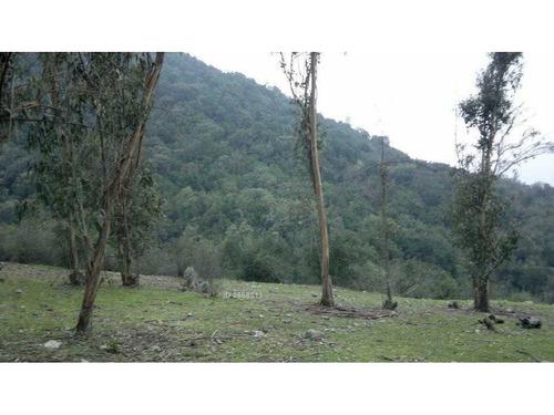 campo en rinconada de doñihue