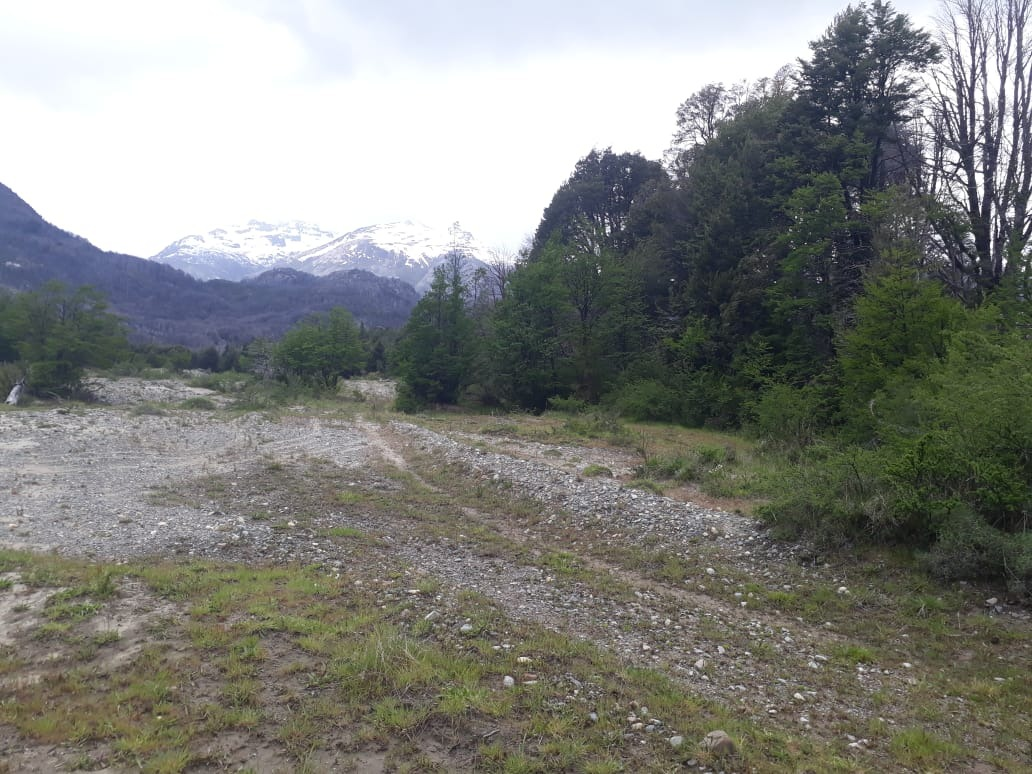 campo en rio tigre cholila, chubut, patagonia
