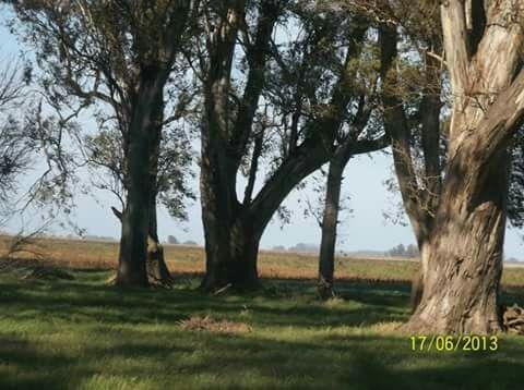 campo en san andres de giles paraje tuyuti km 124 1/2 ruta 7