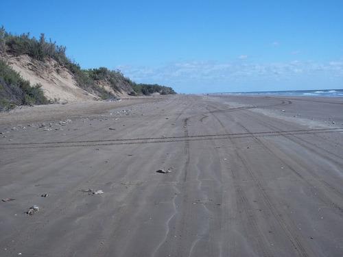 campo en san clemente 15720.10 mts2 entre ruta 11 y el mar