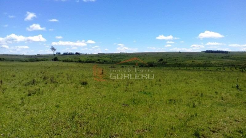 campo en uruguay, maldonado, al norte de josé ignacio- ref: 25684