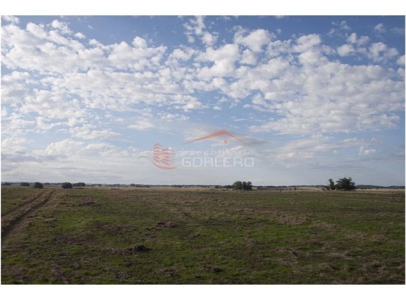 campo en uruguay, rocha, josé ignacio- ref: 25069