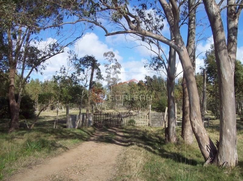 campo en uruguay, rocha, la paloma- ref: 21058
