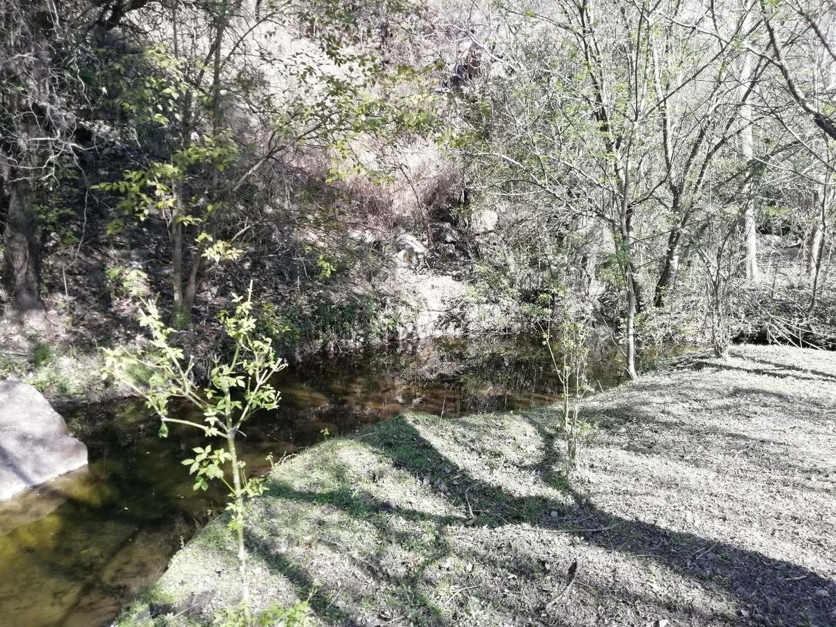 campo en venta 19 hectareas en tala huasi zona icho cruz