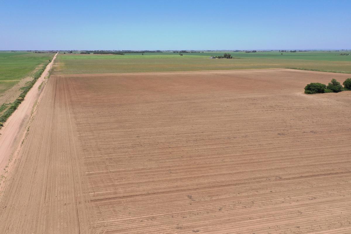 campo en venta - 22 ha en rio tercero, cordoba -agricola sobre ruta