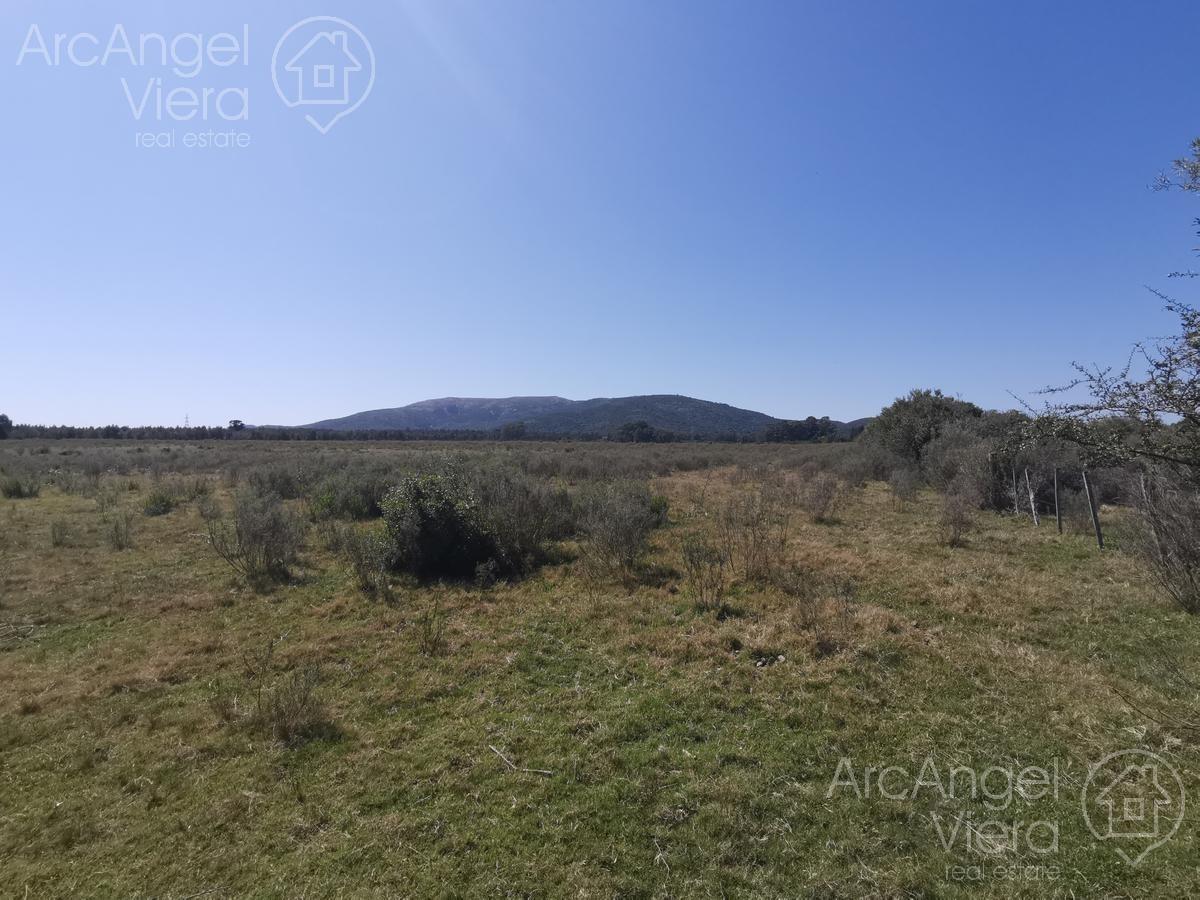 campo en venta   alquiler - cerros azules
