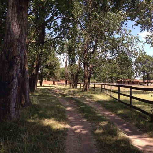 campo en venta de 8 hectareas gral. rodriguez