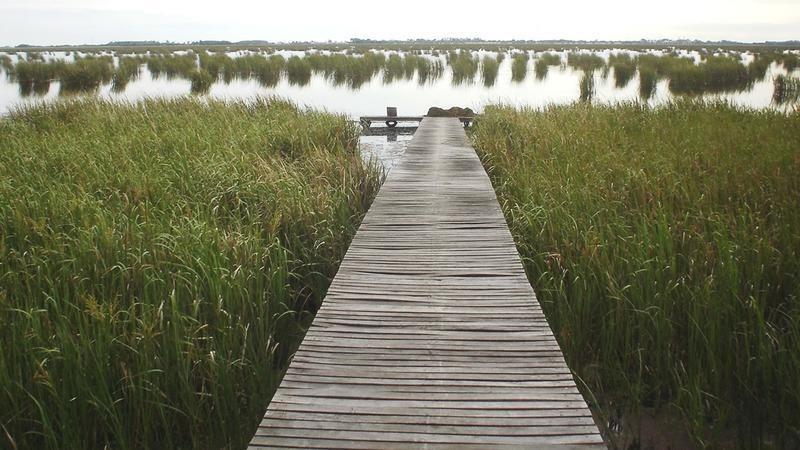 campo en venta en lezama - 530 has. ideal turismo rural con laguna pesca - retasado