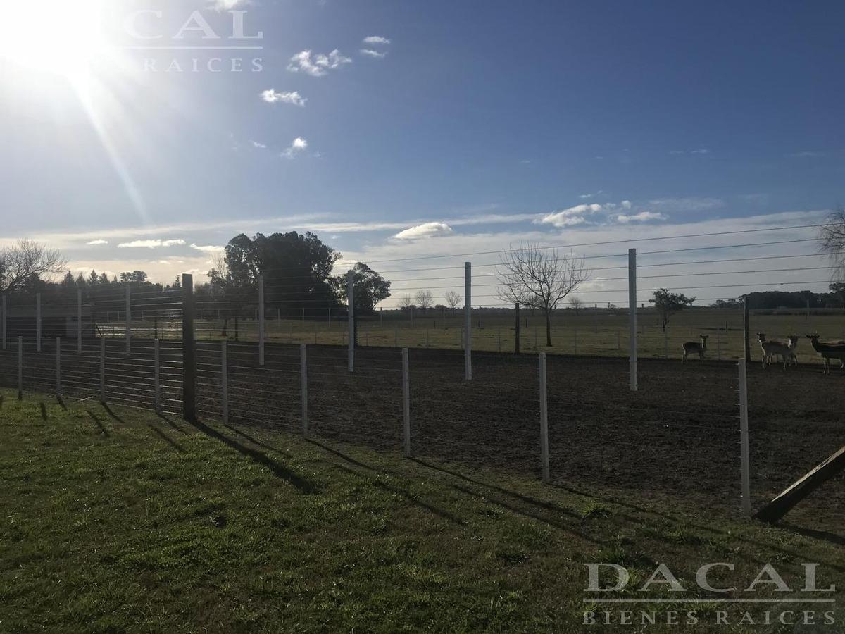 campo en venta en magdalena ruta 11 dacal bienes raices