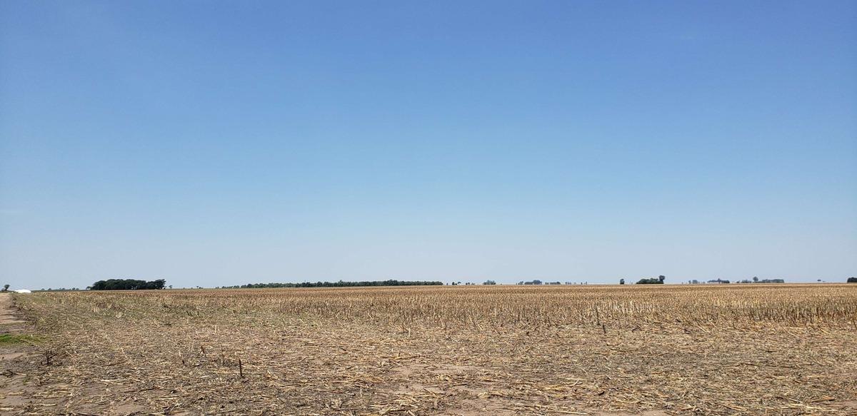 campo en venta en matorrales a 100 km de  córdoba