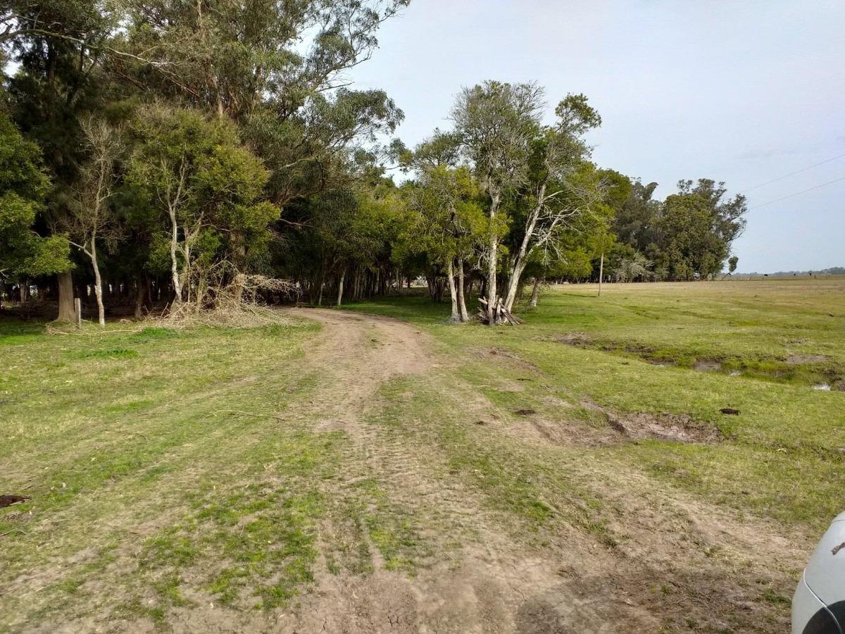 campo en venta en punta indio 115 hectáreas