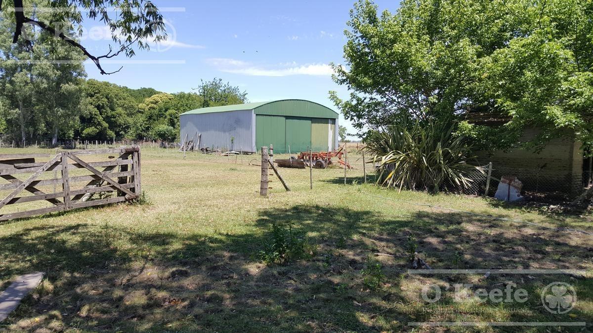 campo en venta - ideal feed lot