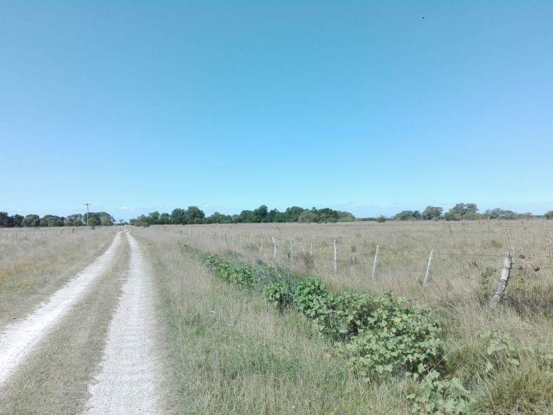 campo en venta. magdalena