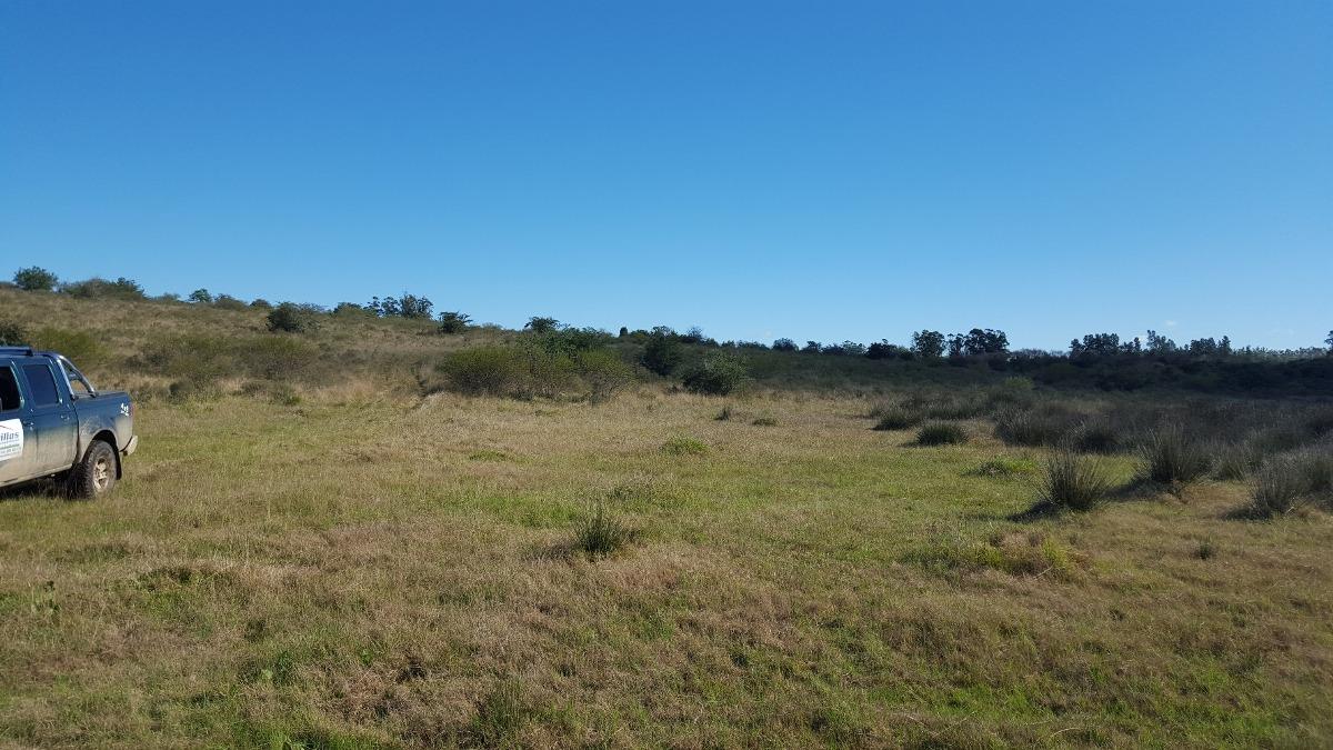 campo enclavado de 33 hectareas agreste con cerros.