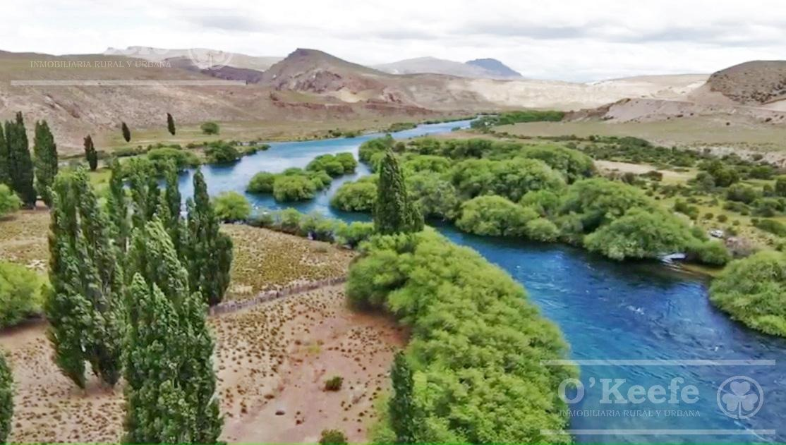 campo exclusivo sobre el rio limay. ideal pescadores!
