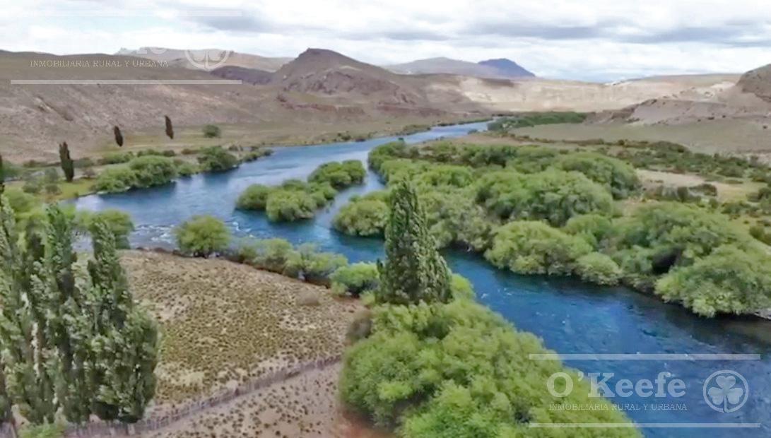 campo exclusivo sobre el rio limay. ideal pescadores!