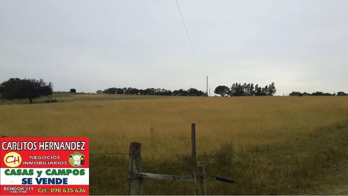 campo fruticola ganadero chacra p venta prox ruta 1 y ruta 3