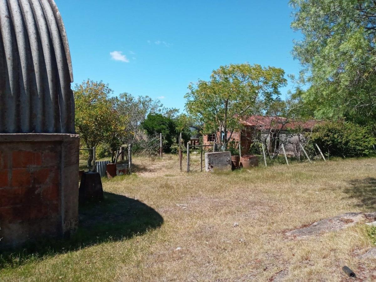 campo ganadero  21 has en lavalleja.