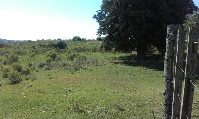 campo ganadero a 2 km de minas.