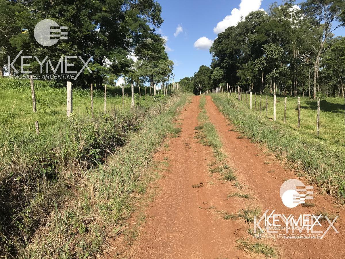 campo ganadero - chacra - estancia - san antonio misiones