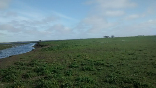 campo ganadero gral. lavalle