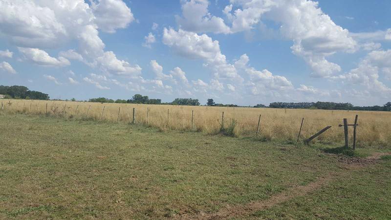 campo ganadero para armar- 170 has - añosa arboleda