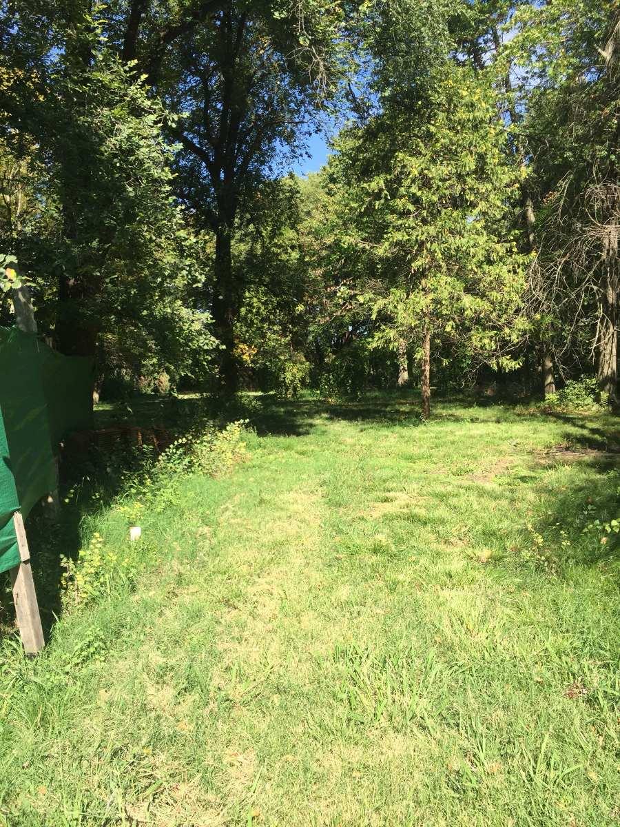 campo general rodriguez ruta 5 km 55,5 hectareas 2