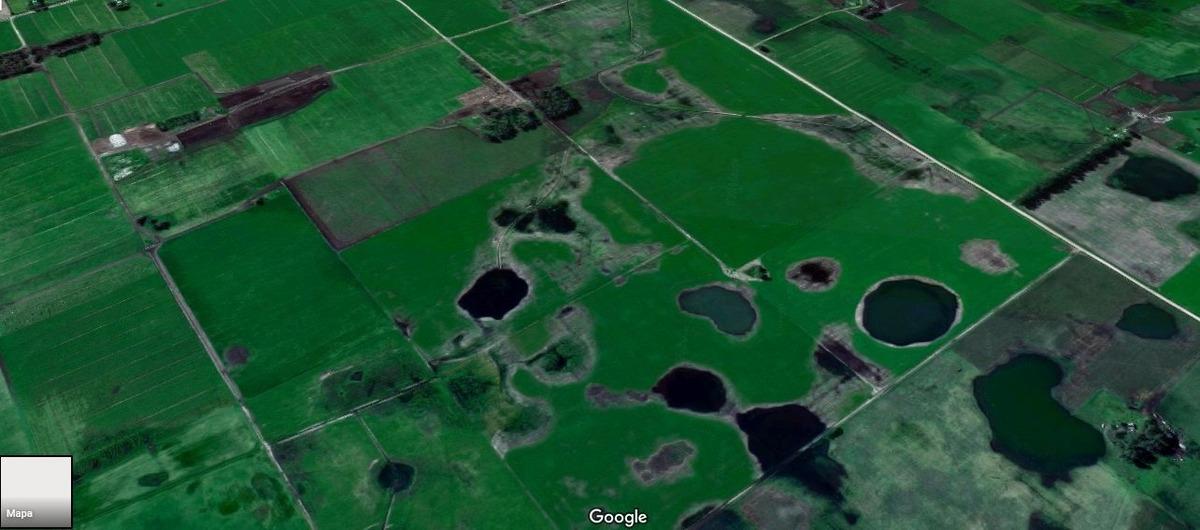 campo mixto de 217 hectareas en tandil - napaleofu en venta