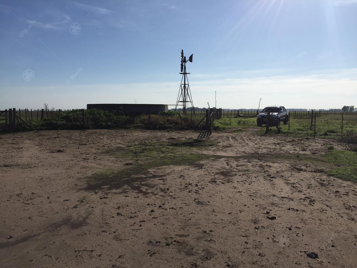 campo mixto en bolivar con muy buen acceso