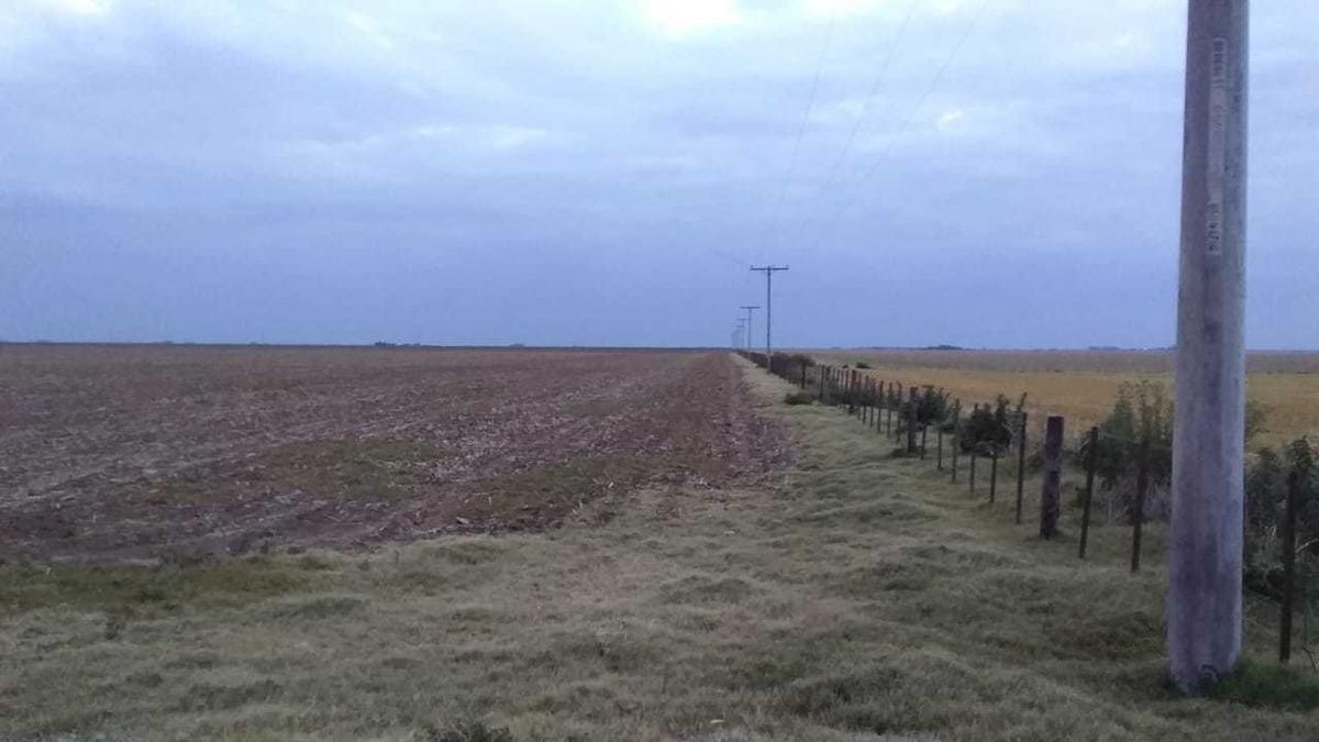 campo mixto suelos iii y vi zona rio cuarto 3.000 hectáreas o fracciones de 1.000