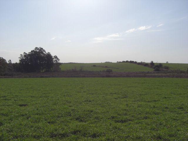 campo muy pintoresco en conchillas. ref: 1.010