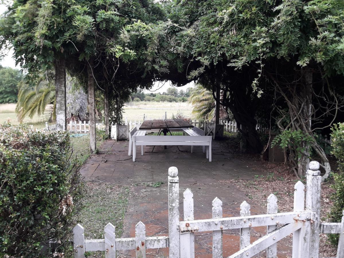 campo - open door