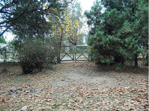 campo - parque san martin