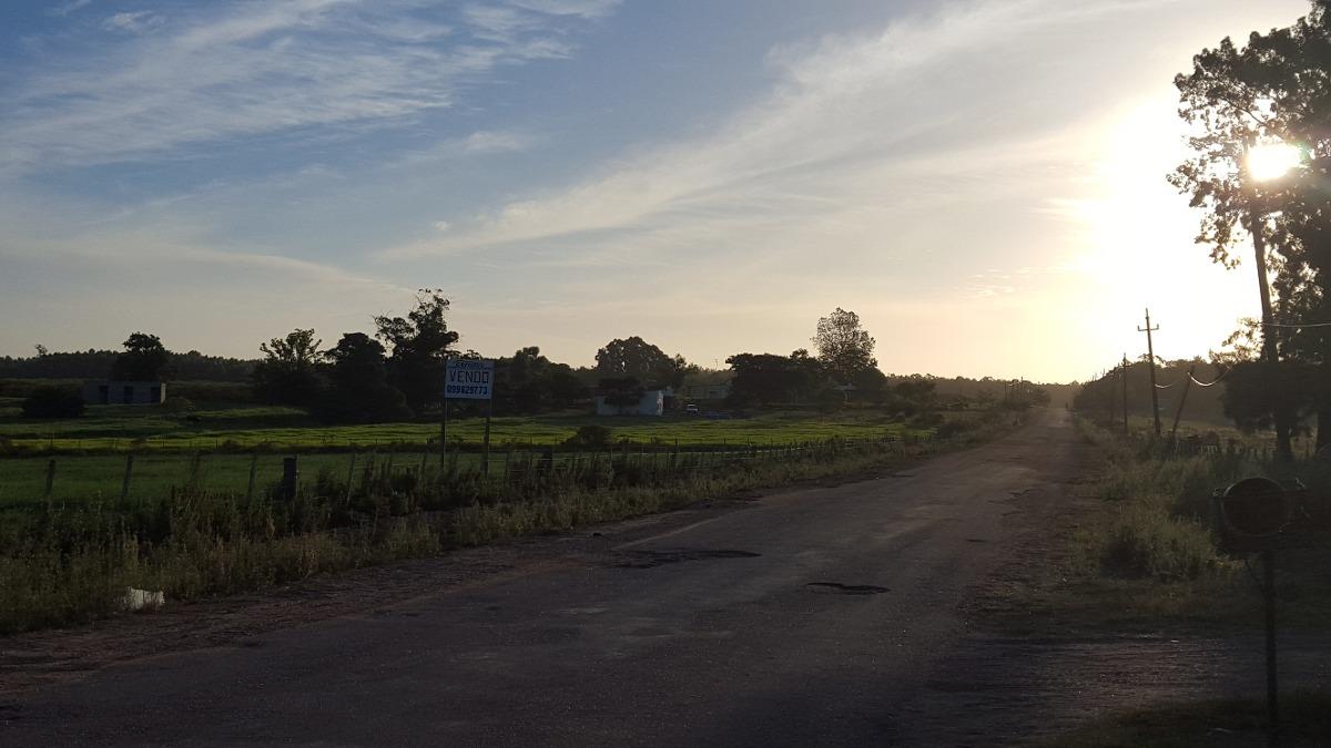 campo pronto para construir en parador tajes .