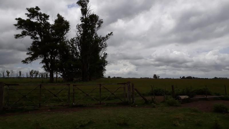 campo - ranchos