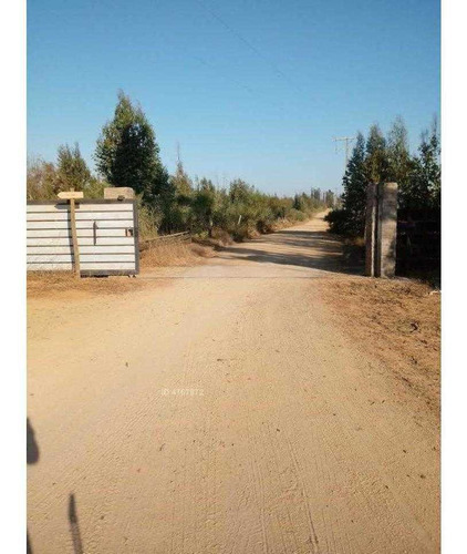 campo real parcela 58 58
