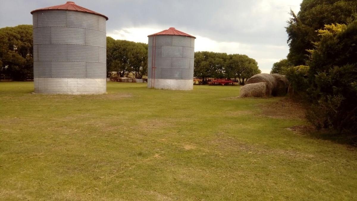 campo san cayetano - 224 hectareas