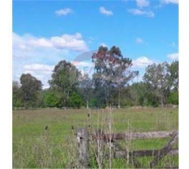 campo terreno lote 2ha cerca estancias pilar