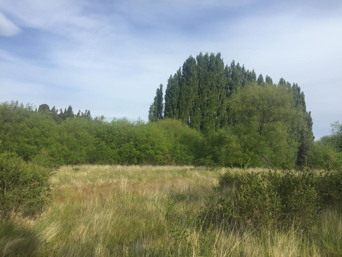 campo - trevelin
