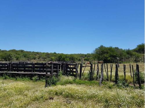 campo tulumba