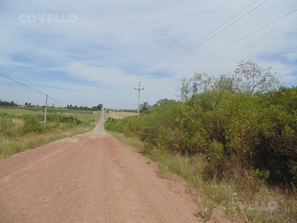 campo ubicado en zona urbana, cuenta con buena calle de ingreso, lagunas. para fraccionamiento.